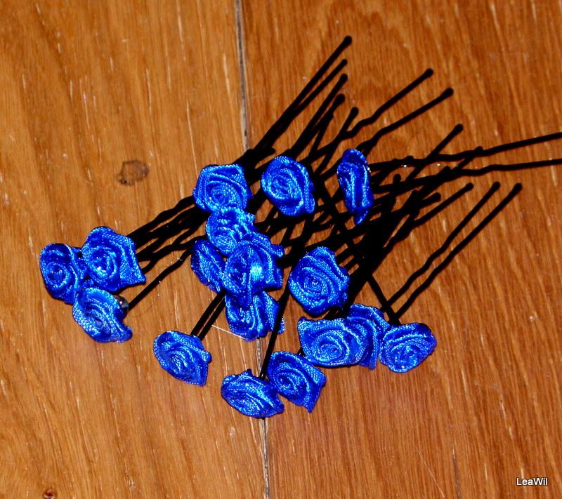 Vlasenka S Ruzickou Kralovska Modra Wild Roses