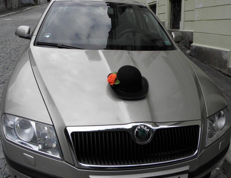 1132128daa7 Buřinka na ženichovo auto s přísavkami